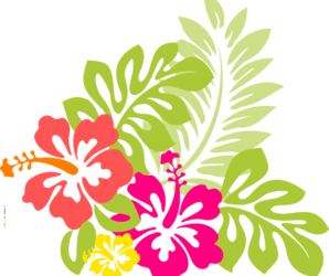 Hawaiian Night – 12th December