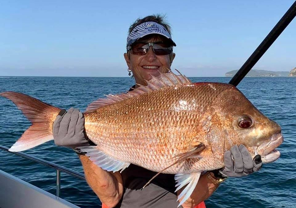 Labour Weekend Snapper